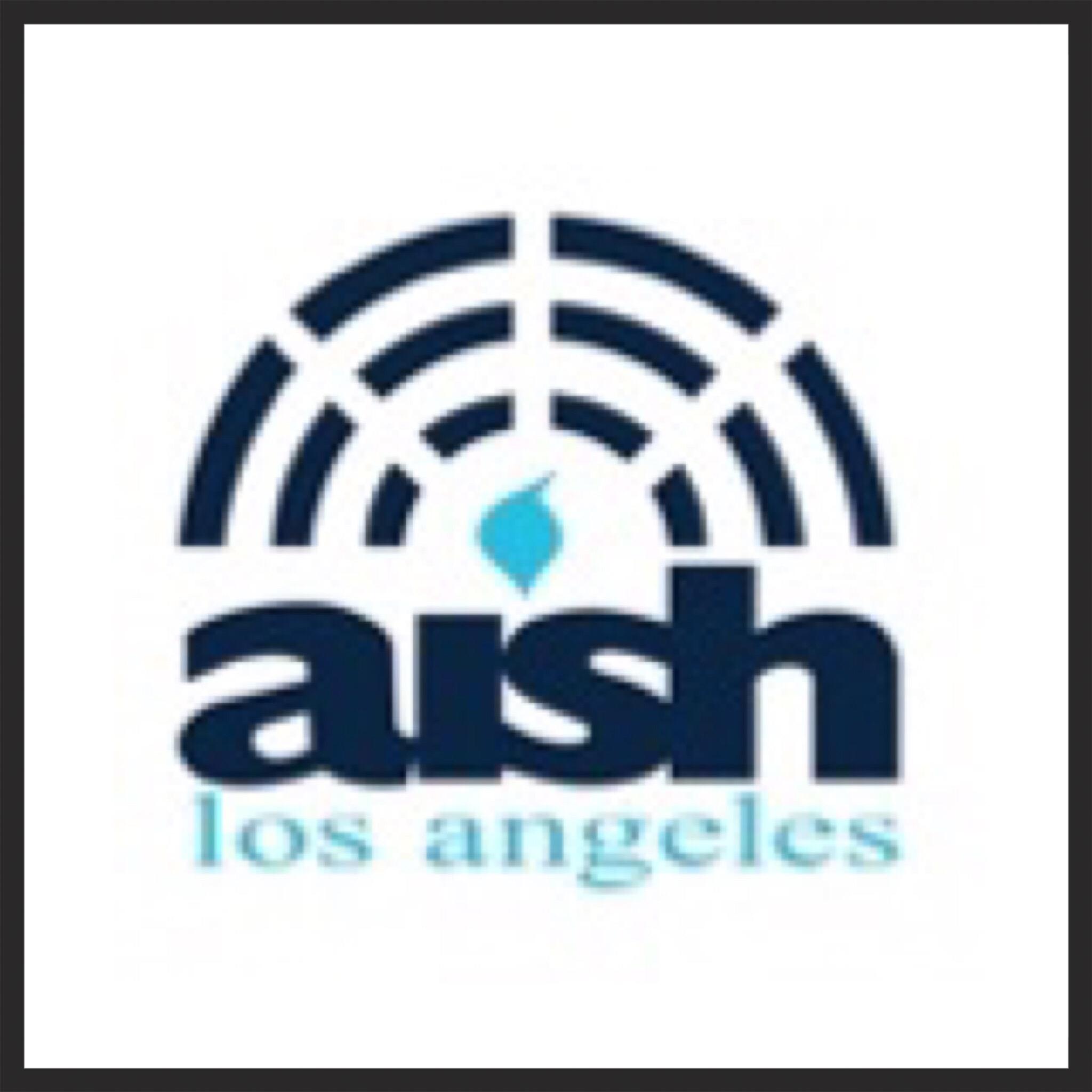 Executive Learning Logo - Aish LA Website - contact